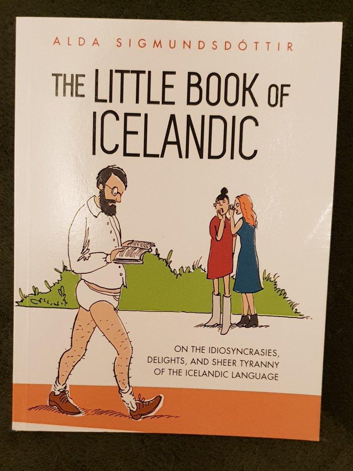 Icelandic Language Day (Dagur ÌslenskarTungu)
